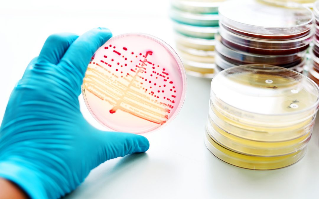 Combating antibiotic resistance: New drugs or alternative therapies?