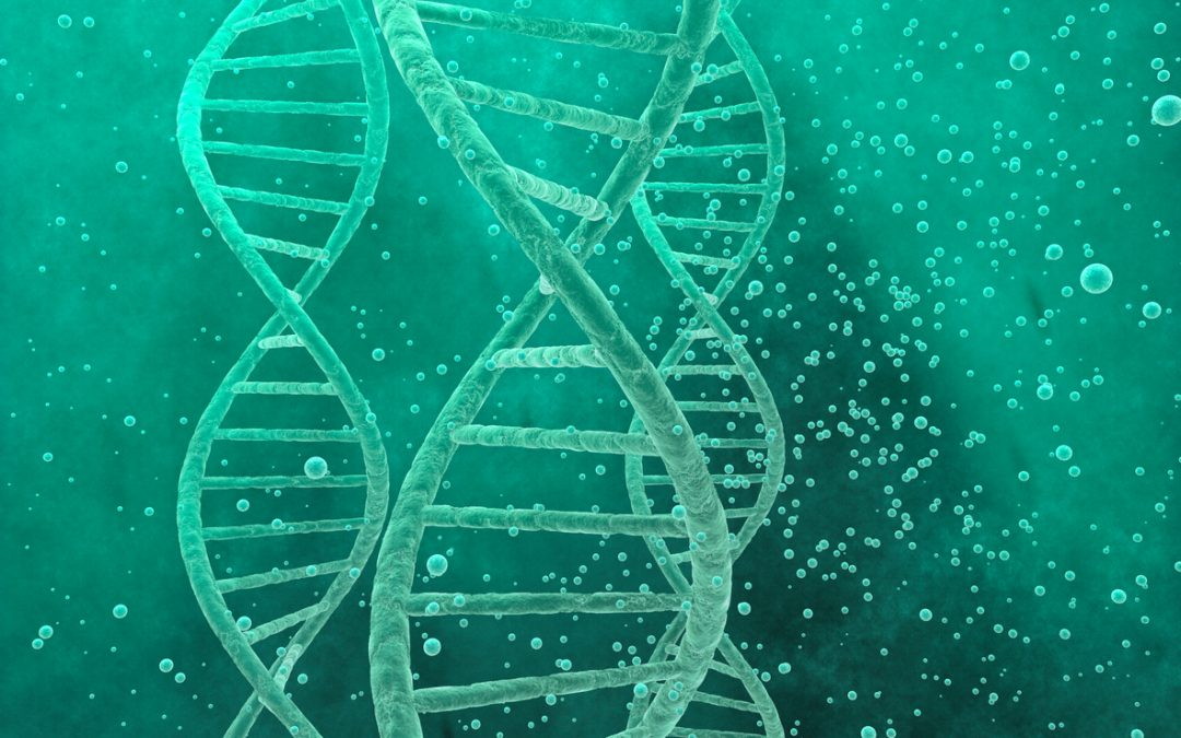 A game-changer for hereditary cancer patients