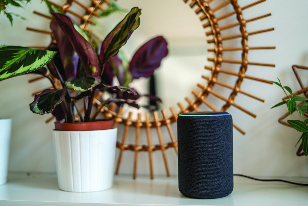 Amazon Alexa on a table with plants in the background